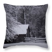 Shelter From The Cold Throw Pillow