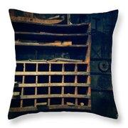 Shelves In The Cedar Creek Mill  Throw Pillow