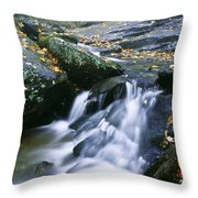 Shenandoah National Park Throw Pillow