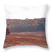 Shenandoah Plain Throw Pillow