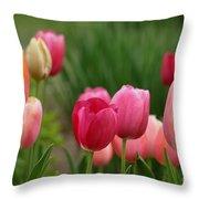 Sherbert Color Tulips Throw Pillow