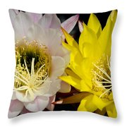 Sherbet Throw Pillow