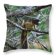 Shermans Fox Squirrel Throw Pillow