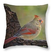 Shes An Early Bird  New Version Throw Pillow