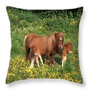 Shetland Pony With Foal Twins Throw Pillow
