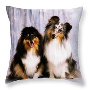Shetland Sheepdogs Portrait Of Two Dogs Throw Pillow