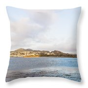 Shhhh - Sea Otters Sleeping Throw Pillow