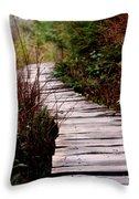 Shi Shi Boardwalk Throw Pillow
