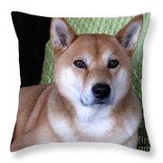 Shiba Inu Kobi-3 Throw Pillow