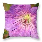 Shimmer Flower Throw Pillow