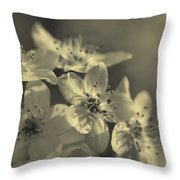 Shimmering Callery Pear Blossoms Throw Pillow