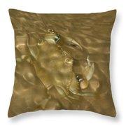 Shimmering Crab Throw Pillow