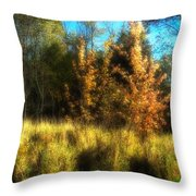 Shimmy Shimmy Shimmer Throw Pillow