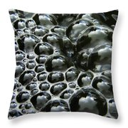 Shiney Bubbles Throw Pillow