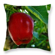 Shiny Red And Ripe  Throw Pillow