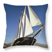 Ship Sailing Through The Galapagos Throw Pillow