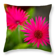 Shockingly Pink Throw Pillow