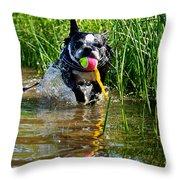 Shoreline Conditioning Throw Pillow