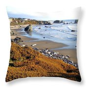 Shores Of Oregon Throw Pillow