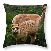 Short And Tall Throw Pillow