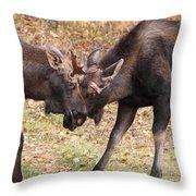 Shoving Match Throw Pillow