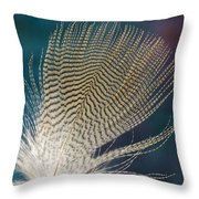 Wood Duck Feather Throw Pillow