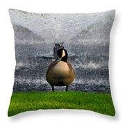 Showering Canadian Goose Throw Pillow