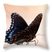 Showing Colors Throw Pillow