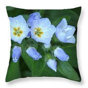 Showy Jacob's Ladder Throw Pillow