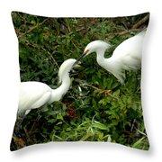 Showy Snowy Egrets Throw Pillow