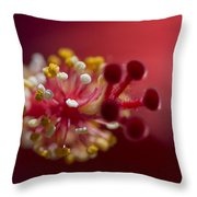 Showy Tropical Vibrant Red Hibiscus Pistil Throw Pillow
