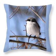 Shrike - Lonely - Missing You Throw Pillow