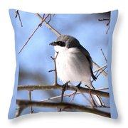 Shrike - Lonely Throw Pillow