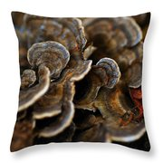 Shrooms Abstracted Throw Pillow