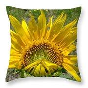 Shy Sunflower Throw Pillow