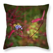 Siberian Dogwood Throw Pillow