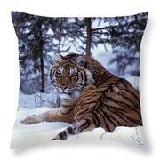 Siberian Tiger Lying On Mound Of Snow Throw Pillow