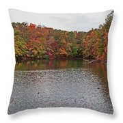 Sibley Pond Throw Pillow