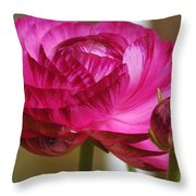 Side View Of A Blossom  Throw Pillow
