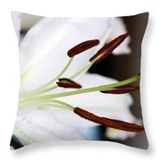 Side View Of A Lily 2 Throw Pillow
