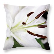 Side View Of A Lily 3 Throw Pillow