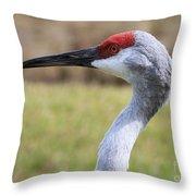 Sideways Sandhill Crane Throw Pillow