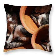 Siesta  4 Throw Pillow