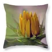 Significance Throw Pillow