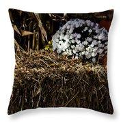 Sign's Of Fall Throw Pillow