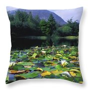 Silent Valley, Mourne Mountains Throw Pillow