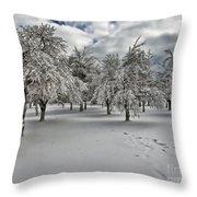 Silent Winter Throw Pillow