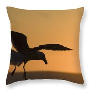 Silhouette Of A Seagull In Flight At Throw Pillow