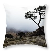 Silhouette Of Tree In Mist Throw Pillow