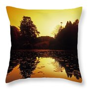 Silhouetted Home And Trees Near Water Throw Pillow